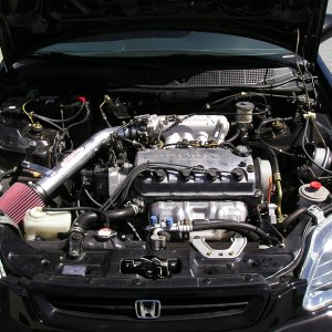 engine bay shot
