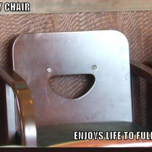 funny-pictures-happy-chair-enjoying-life