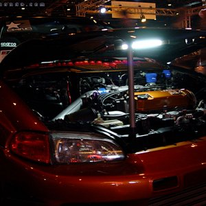 Hot Import Nights - Civic Hatchback